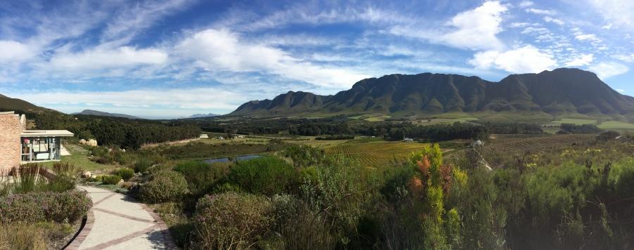 Views from Spookfontein, Upper Hemel-en-Aarde Valley