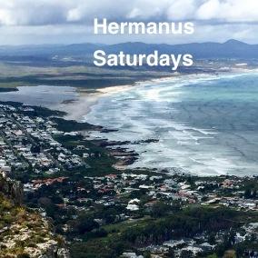 Saturdays in Hermanus