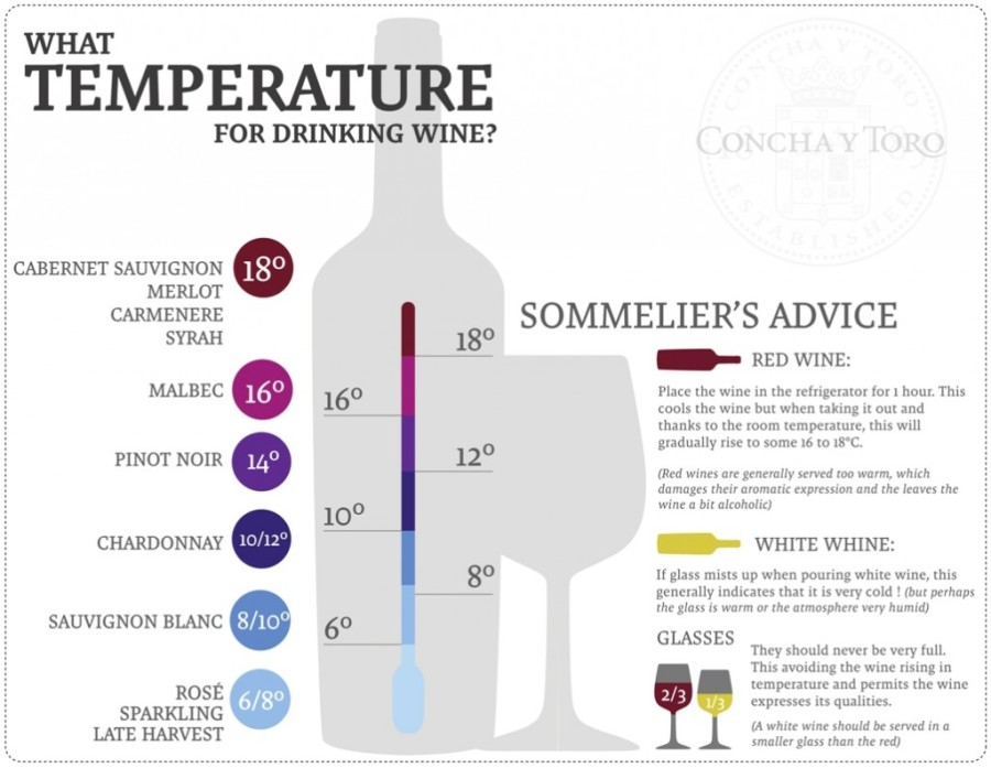 infographic_What-temperature-for-drinking-wine_Fans-1024x794.jpg